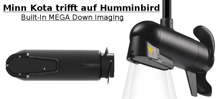 BUILT-IN MEGA DOWN IMAGING